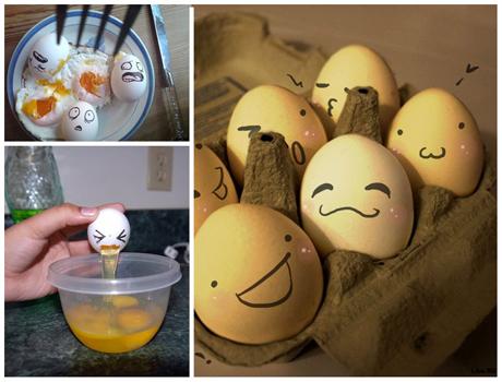 http://www.n-javan.com/aks/khalaghiat-pic/egg01.jpg