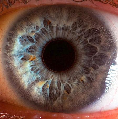 http://www.n-javan.com/aks/khalaghiat-pic/eye01.jpg