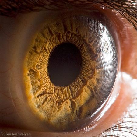 http://www.n-javan.com/aks/khalaghiat-pic/eye04.jpg