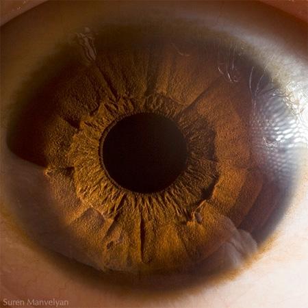 http://www.n-javan.com/aks/khalaghiat-pic/eye05.jpg