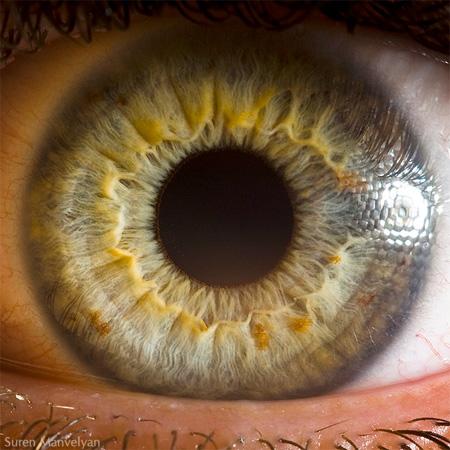 http://www.n-javan.com/aks/khalaghiat-pic/eye06.jpg