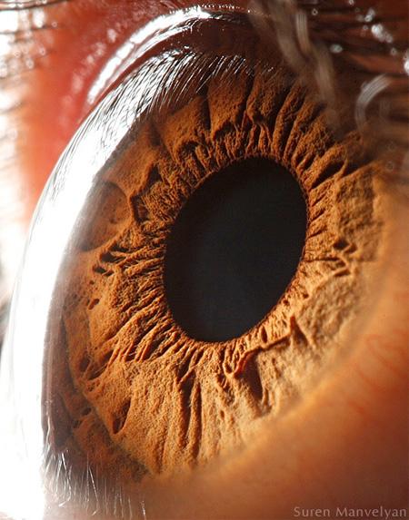 http://www.n-javan.com/aks/khalaghiat-pic/eye08.jpg