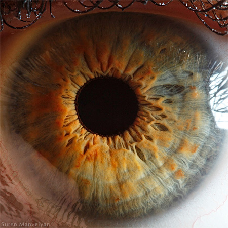 http://www.n-javan.com/aks/khalaghiat-pic/eye10.jpg